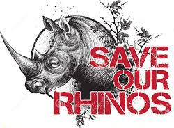 save rhinos 1