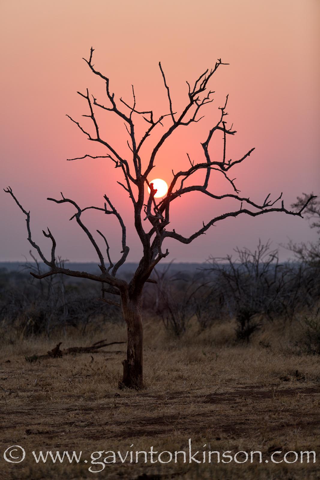 sunrise on kirriklapper